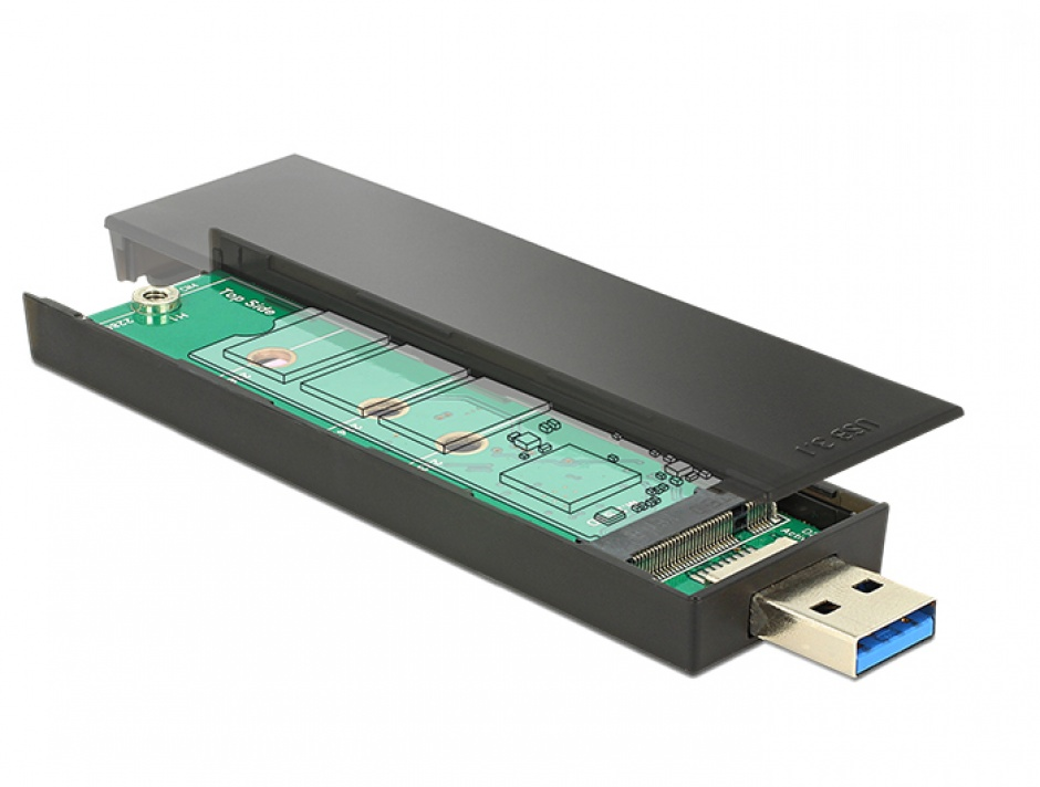Imagine Rack extern pentru SSD M.2 Key B 80 mm la USB 3.1, Delock 42593