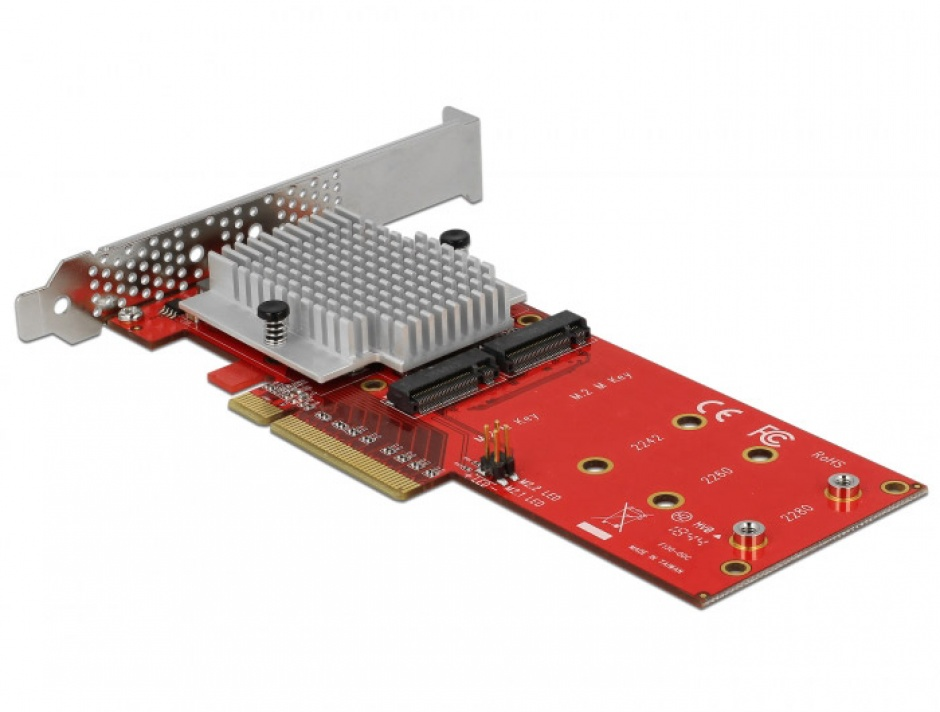 Imagine PCI Express cu 2 porturi interne NVMe M.2 Key M LPFF, Delock 90305-2